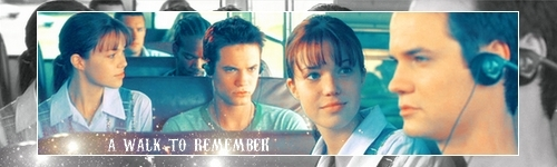 Nur mit Dir - A Walk to Remember Hintergrund possibly containing a sign and Anime called A walk to rememeber