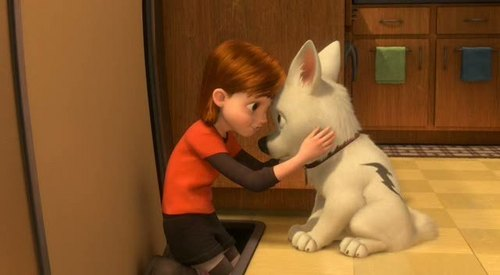 Bolt Beautifull dog