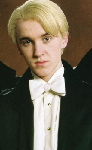 Draco Malfoy wallpaper probably containing a business suit called Draco -3