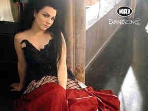 Evanescence[my hero::love'love[]