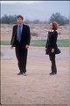 FTF - the-x-files-fight-the-future photo