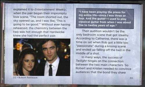 Rob's biography par Little Treasures