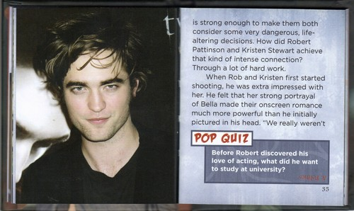 Rob's biography by Little Treasures