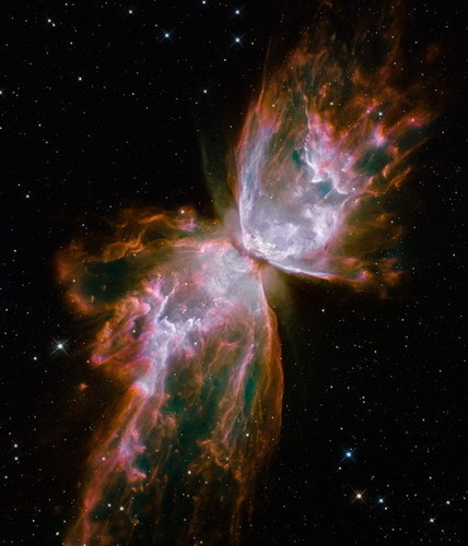 The mariposa Nebula