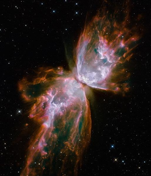 The papillon Nebula