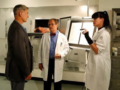7x06 Gibbs, Ducky and Abby