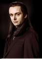 Aro head shot