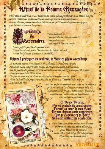 Charmed wallpaper entitled Book of shadows