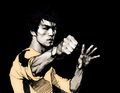 Bruce Lee - bruce-lee fan art