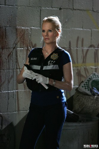 CSI: Las Vegas - Episode 10.06 - Promotional foto
