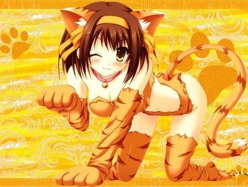 Catgirls fondo de pantalla with anime called Cat girl