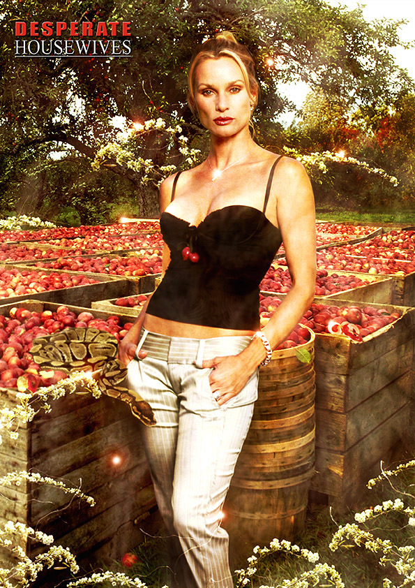 http://images2.fanpop.com/image/photos/8600000/Desperate-Housewives-desperate-housewives-8629617-595-842.jpg
