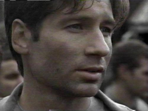 여우 Mulder -- Promo 이미지