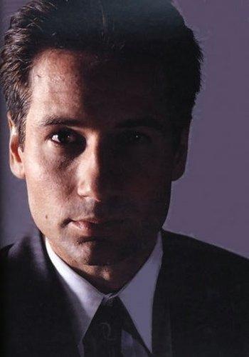 狐, フォックス Mulder -- Promo 画像