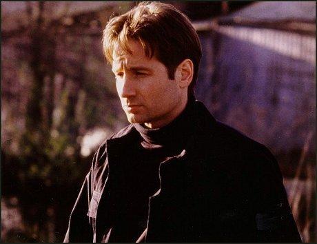 শিয়াল Mulder -- Promo প্রতিমূর্তি