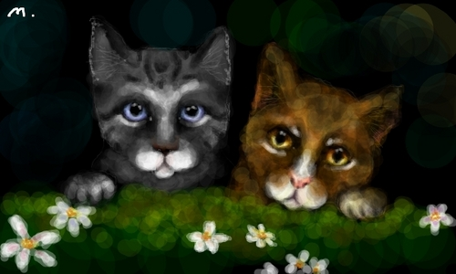 Warriors (Novel Series) wallpaper with a tom, a kitten, and a cat titled Leafpool And Jayfeather
