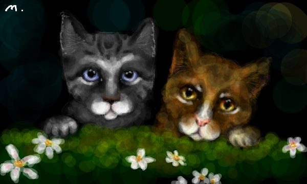Leafpool And Jayfeather