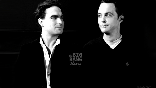 Leonard & Sheldon - the-big-bang-theory Wallpaper