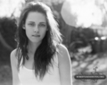New KStew outtakes - Matt Jones Photoshoot - twilight-series photo