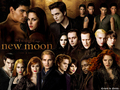 New Moon (1600x1200) - twilight-series wallpaper