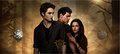 New Moon Official Site - twilight-series photo