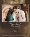 New Moon Scenes from NM Game Cards - twilight-series photo