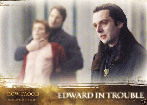 New Moon Tradin Cards (NEW IMAGES)