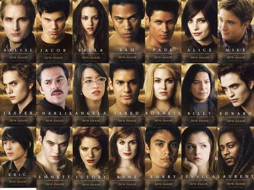 Twilight la saga wallpaper probably containing a portrait entitled New Moon cast