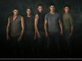 New New Moon Promotional picture (Wolves) !! - twilight-series photo