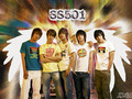 SS501 Wallpaper - ss501 wallpaper