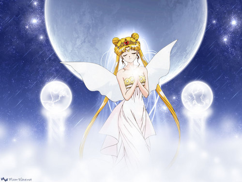 Sailor Moon Sailor Stars wallpaper entitled Sailor Moon Sailor Stars