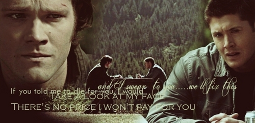 Wincest wallpaper containing a sign called Sam & Dean