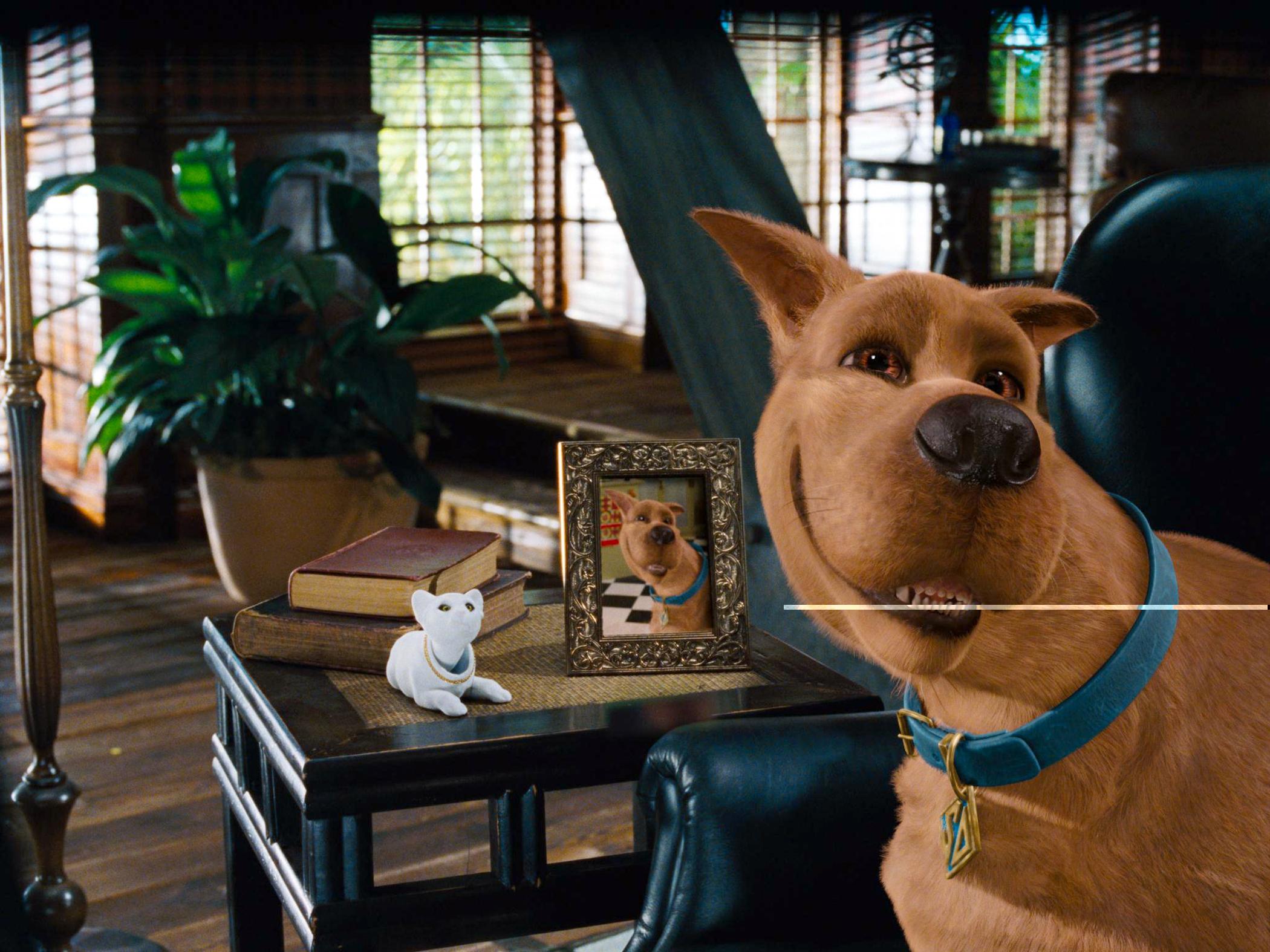 Watch Dog Eat Dog Movie Online Free