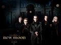 The Volturi coven - team-aro photo