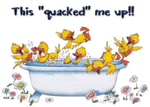 This Quacked Me Up!