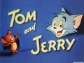 Tom and Jerry - tom-and-jerry wallpaper