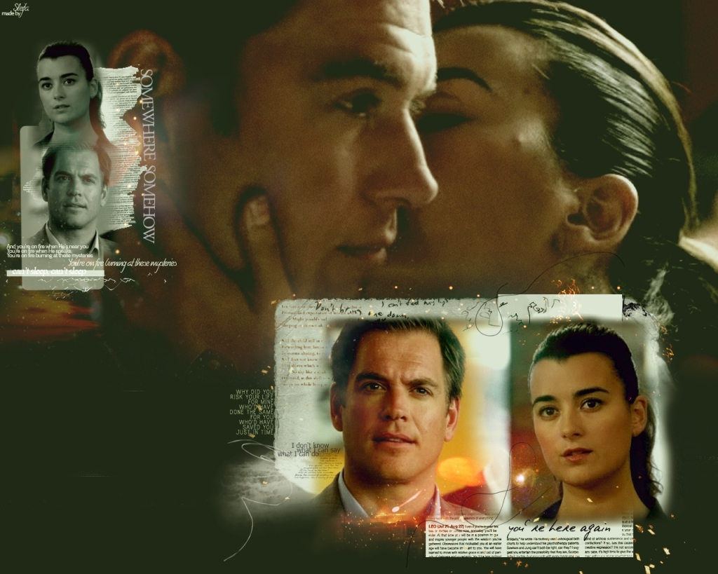 NCIS Couples Tony & Ziva