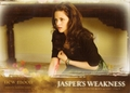 Trading Cards - twilight-series photo