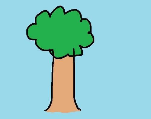 나무, 트리