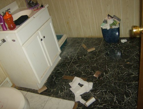 2 brats wrecked my bathroom