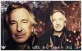 Alan Colorversion - alan-rickman wallpaper