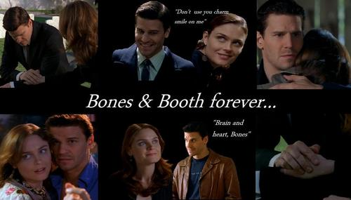 Booth and Bones wallpaper containing a business suit called B & B <3