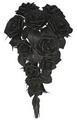 Black Leather Roses