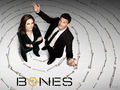 Bones - television wallpaper