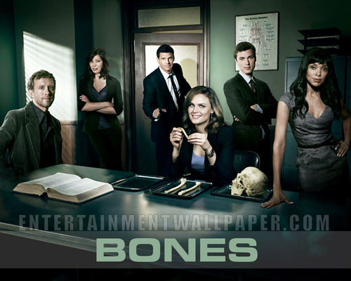 Television wallpaper possibly containing a sign and a business suit titled Bones