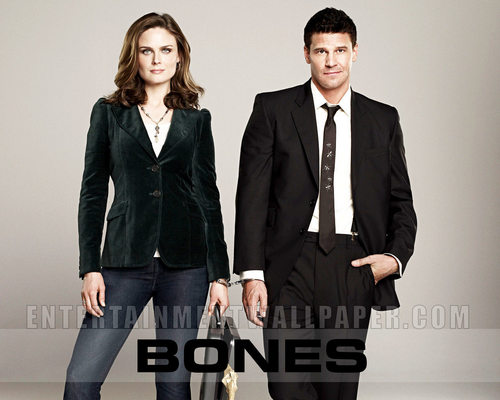 televisi wallpaper with a business suit, a well dressed person, and a suit called bones
