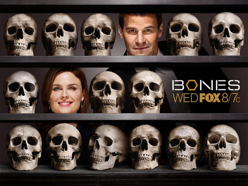 Television wallpaper entitled Bones