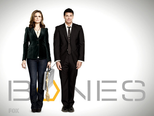 televisão wallpaper with a business suit, a well dressed person, and a suit entitled bones