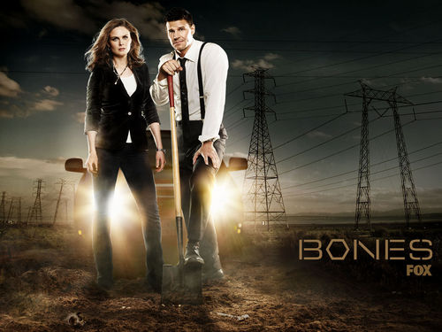 televisi wallpaper possibly with a business suit and a konser titled bones