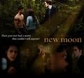 Fanmande - New Moon -  - twilight-series photo